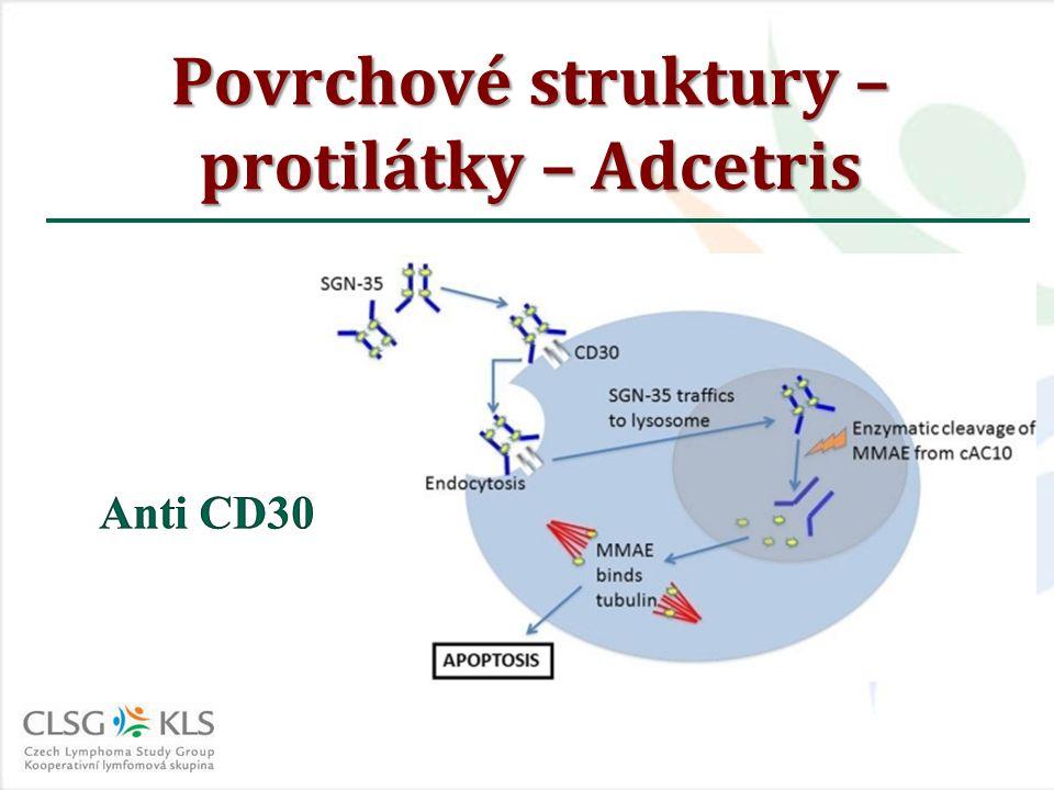 Povrchové struktury – protilátky – Adcetris
