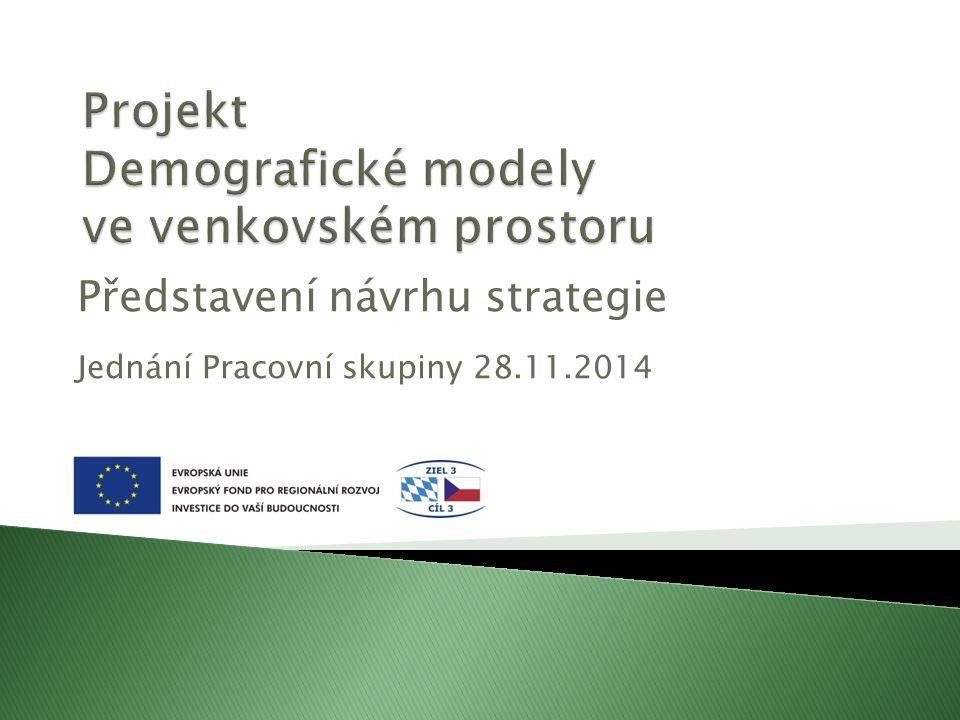 Představení návrhu strategie Jednání Pracovní skupiny 28.11.2014