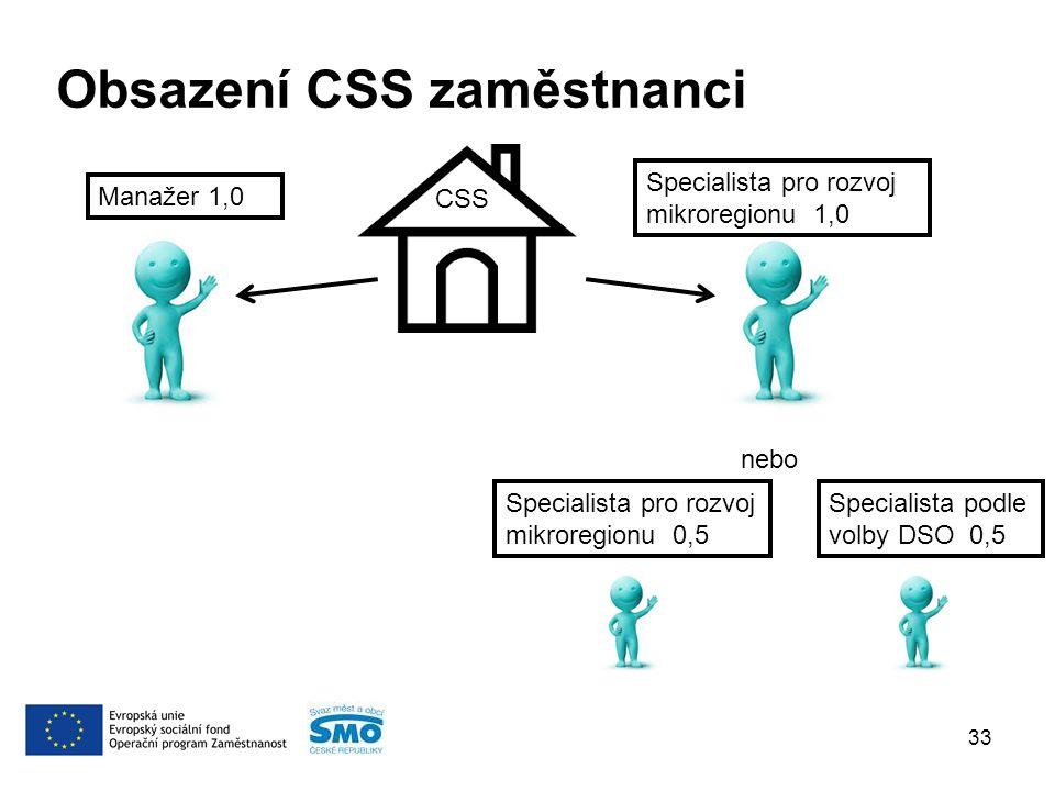 Obsazení CSS zaměstnanci 33 CSS Manažer 1,0 Specialista pro rozvoj mikroregionu 1,0 nebo Specialista pro rozvoj mikroregionu 0,5 Specialista podle volby DSO 0,5