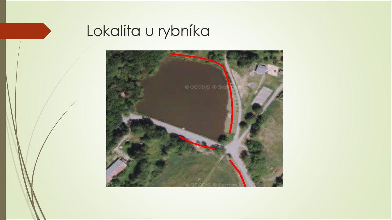 Lokalita u rybníka