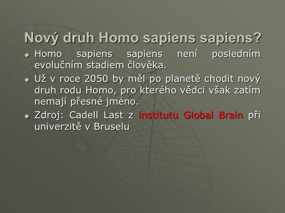 Nový druh Homo sapiens sapiens.  Homo sapiens sapiens není posledním evolučním stadiem člověka.
