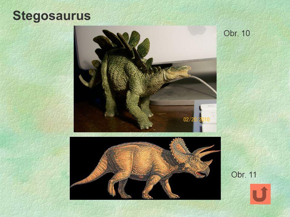 Stegosaurus Obr. 10 Obr. 11