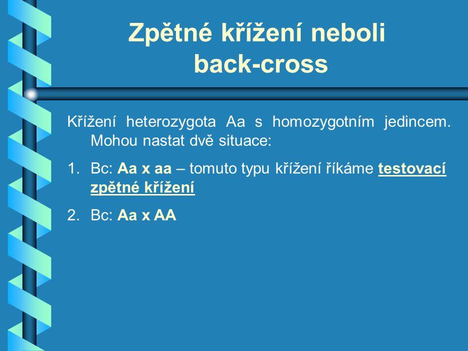 Zpětné křížení neboli back-cross Křížení heterozygota Aa s homozygotním jedincem.