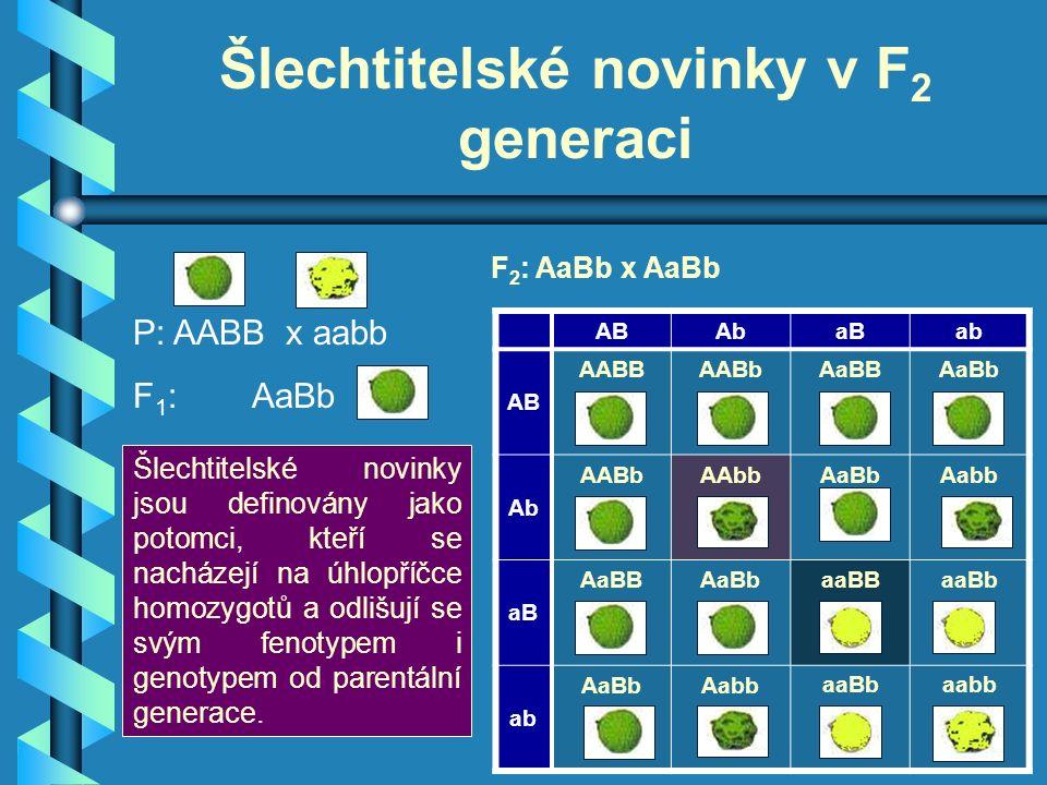 Šlechtitelské novinky v F 2 generaci ABAbaBab AB AABBAABbAaBBAaBb Ab AABbAAbbAaBbAabb aB AaBBAaBbaaBBaaBb ab AaBbAabbaaBbaabb Šlechtitelské novinky jsou definovány jako potomci, kteří se nacházejí na úhlopříčce homozygotů a odlišují se svým fenotypem i genotypem od parentální generace.
