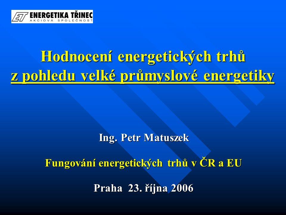 Hodnocení energetických trhů z pohledu velké průmyslové energetiky Ing. Petr Matuszek Fungování energetických trhů v ČR a EU Praha 23. října 2006