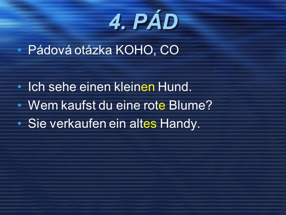 4. PÁD Pádová otázka KOHO, CO Ich sehe einen kleinen Hund.