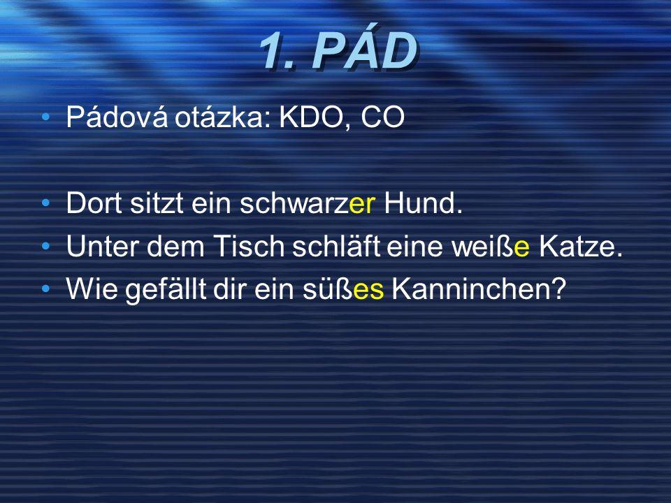 1. PÁD Pádová otázka: KDO, CO Dort sitzt ein schwarzer Hund.