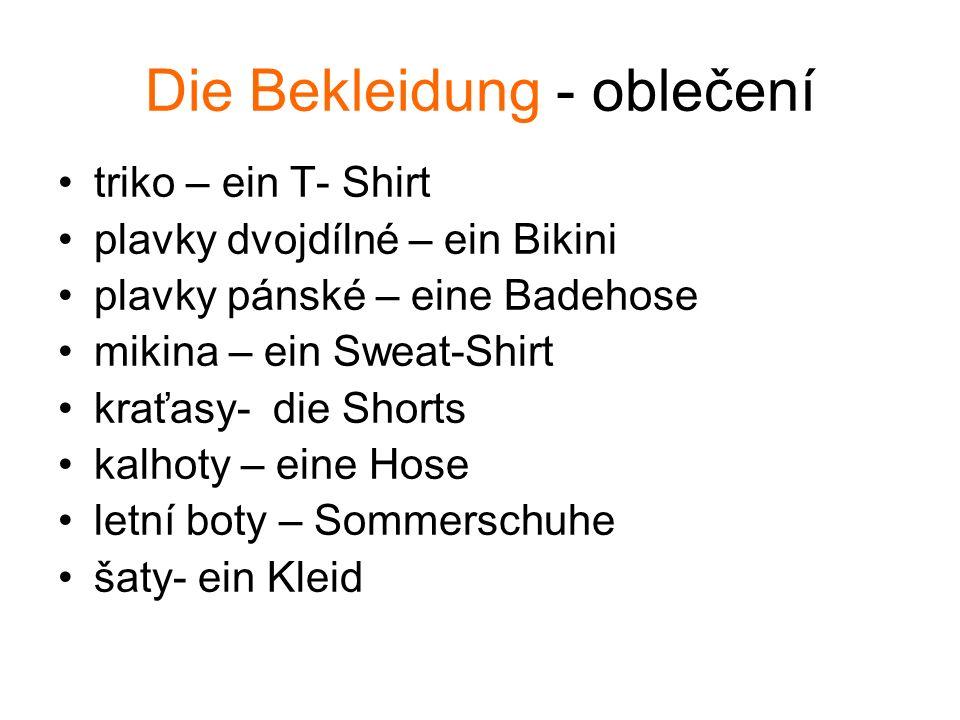 Die Bekleidung - oblečení triko – ein T- Shirt plavky dvojdílné – ein Bikini plavky pánské – eine Badehose mikina – ein Sweat-Shirt kraťasy- die Short