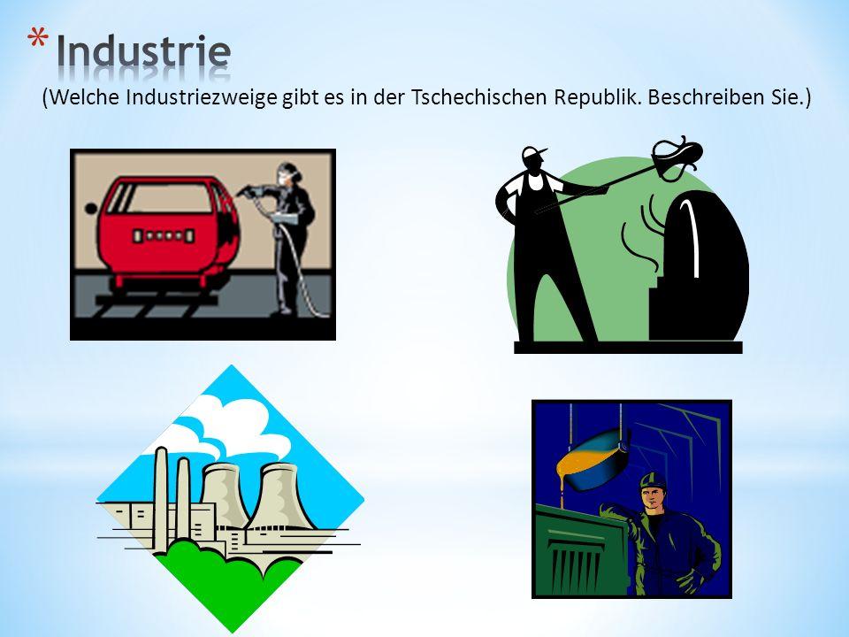 (Welche Industriezweige gibt es in der Tschechischen Republik. Beschreiben Sie.)