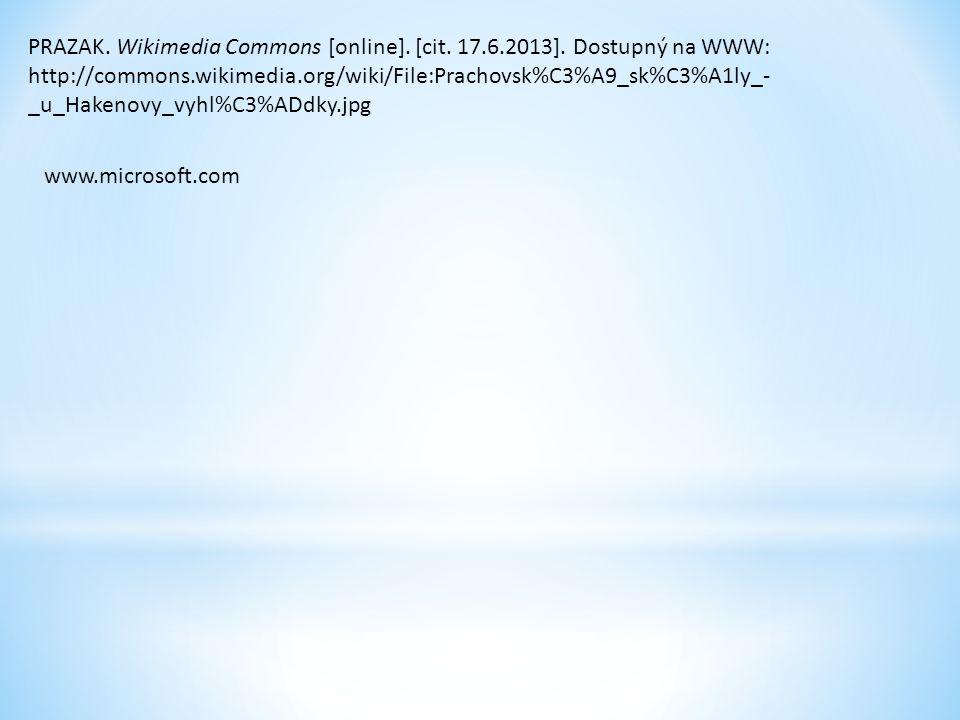 PRAZAK. Wikimedia Commons [online]. [cit. 17.6.2013]. Dostupný na WWW: http://commons.wikimedia.org/wiki/File:Prachovsk%C3%A9_sk%C3%A1ly_- _u_Hakenovy