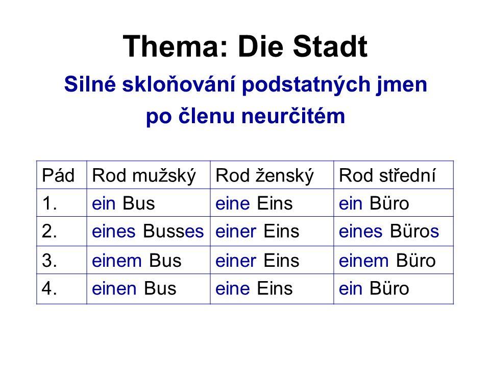 Thema: Die Stadt Silné skloňování podstatných jmen po členu neurčitém PádRod mužskýRod ženskýRod střední 1.