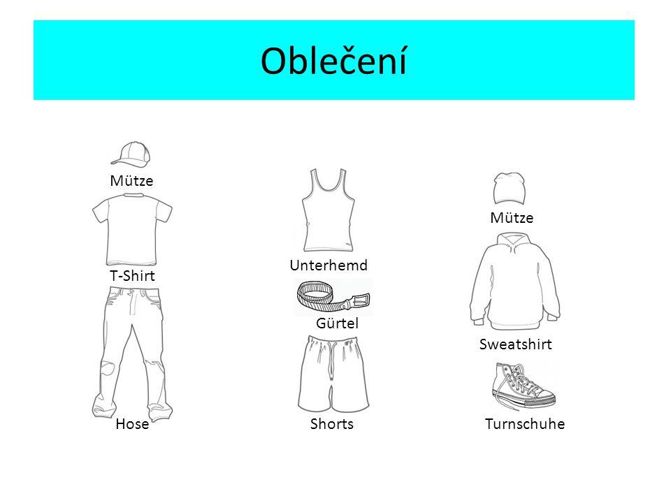 Oblečení Přeložte věty Anna nosí tílko.-> ………………………..