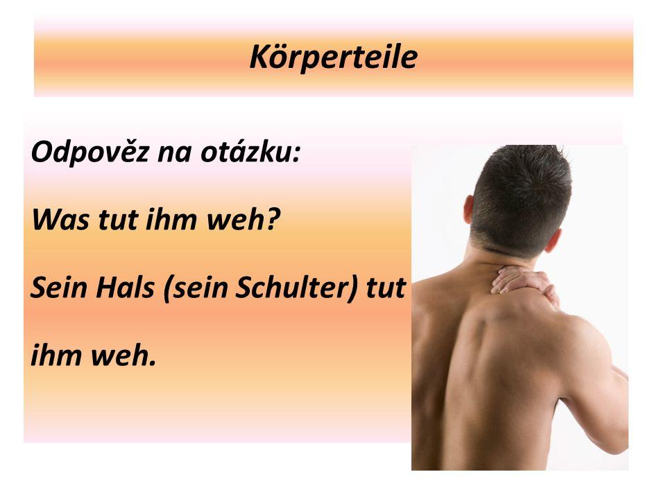 Körperteile Odpověz na otázku: Was tut ihm weh Sein Hals (sein Schulter) tut ihm weh.