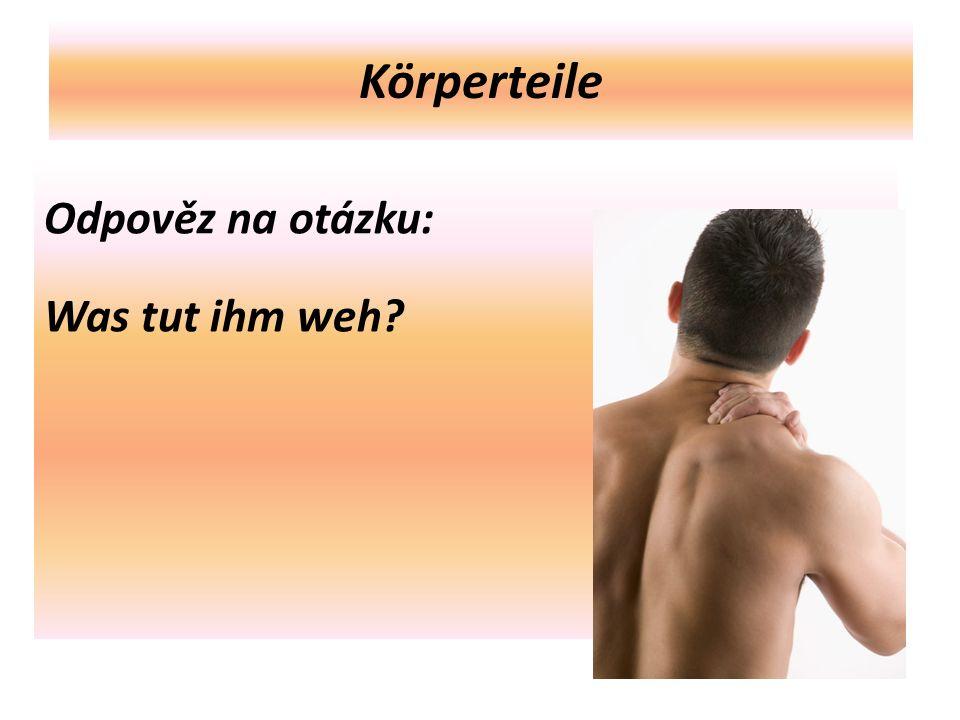 Körperteile Odpověz na otázku: Was tut ihm weh