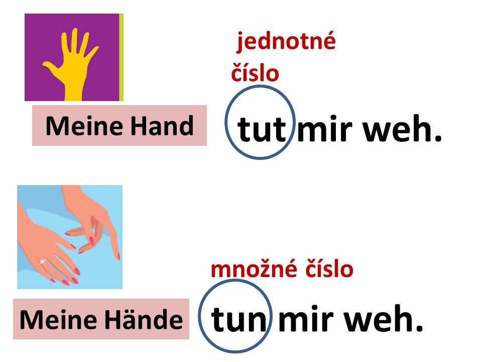 Meine Hand Meine Hände tut mir weh. tun mir weh. jednotné číslo množné číslo