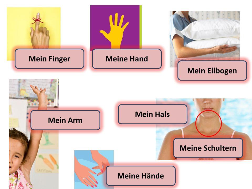Meine Hände Meine Schultern Mein Arm Mein FingerMeine Hand Mein Ellbogen Mein Hals