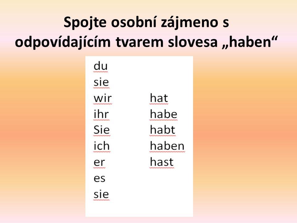 """Spojte osobní zájmeno s odpovídajícím tvarem slovesa """"haben"""