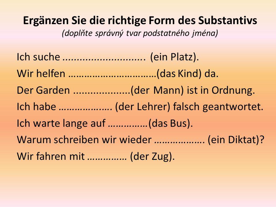Ergänzen Sie die richtige Form des Substantivs (doplňte správný tvar podstatného jména) Ich suche.............................
