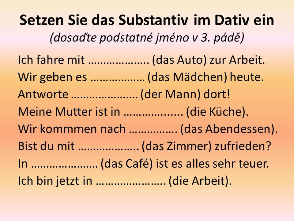 Setzen Sie das Substantiv im Dativ ein (dosaďte podstatné jméno v 3.