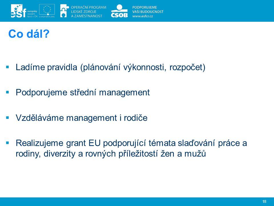.  Ladíme pravidla (plánování výkonnosti, rozpočet)  Podporujeme střední management  Vzděláváme management i rodiče  Realizujeme grant EU podporující témata slaďování práce a rodiny, diverzity a rovných příležitostí žen a mužů 18 Co dál