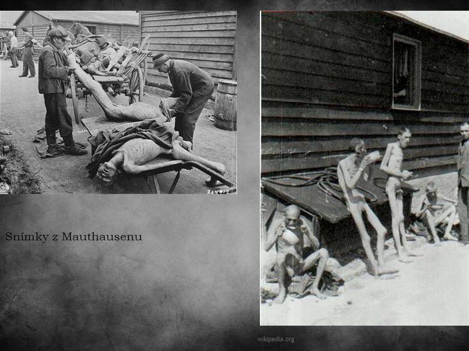 wikipedia.org Snímky z Mauthausenu