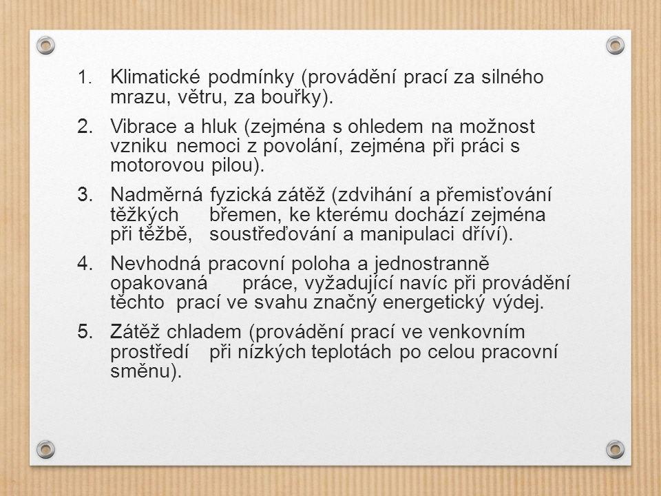 1. Klimatické podmínky (provádění prací za silného mrazu, větru, za bouřky).