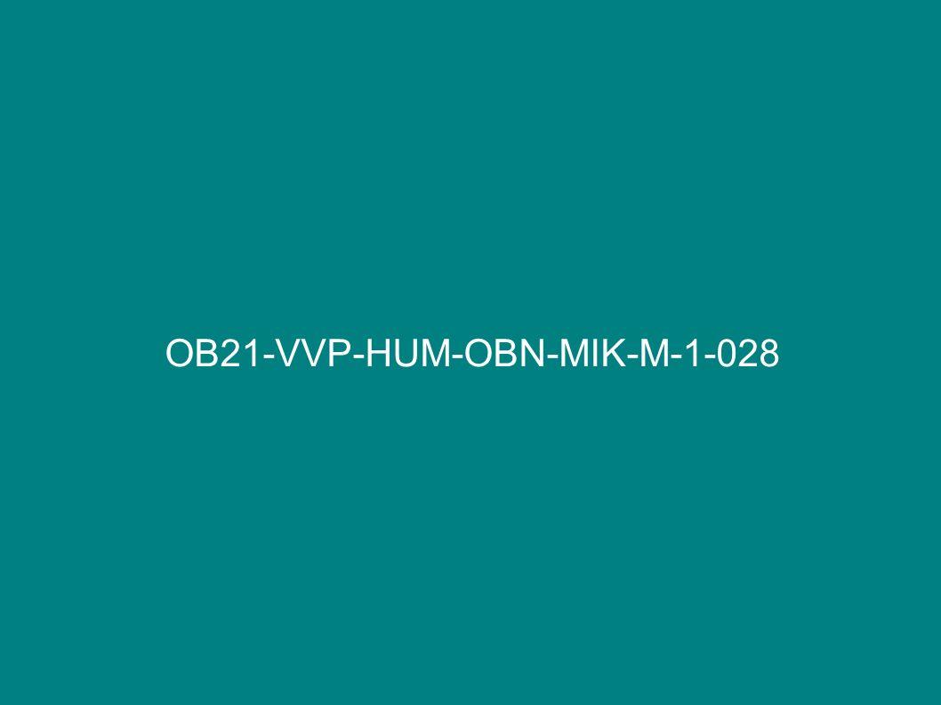 OB21-VVP-HUM-OBN-MIK-M-1-028