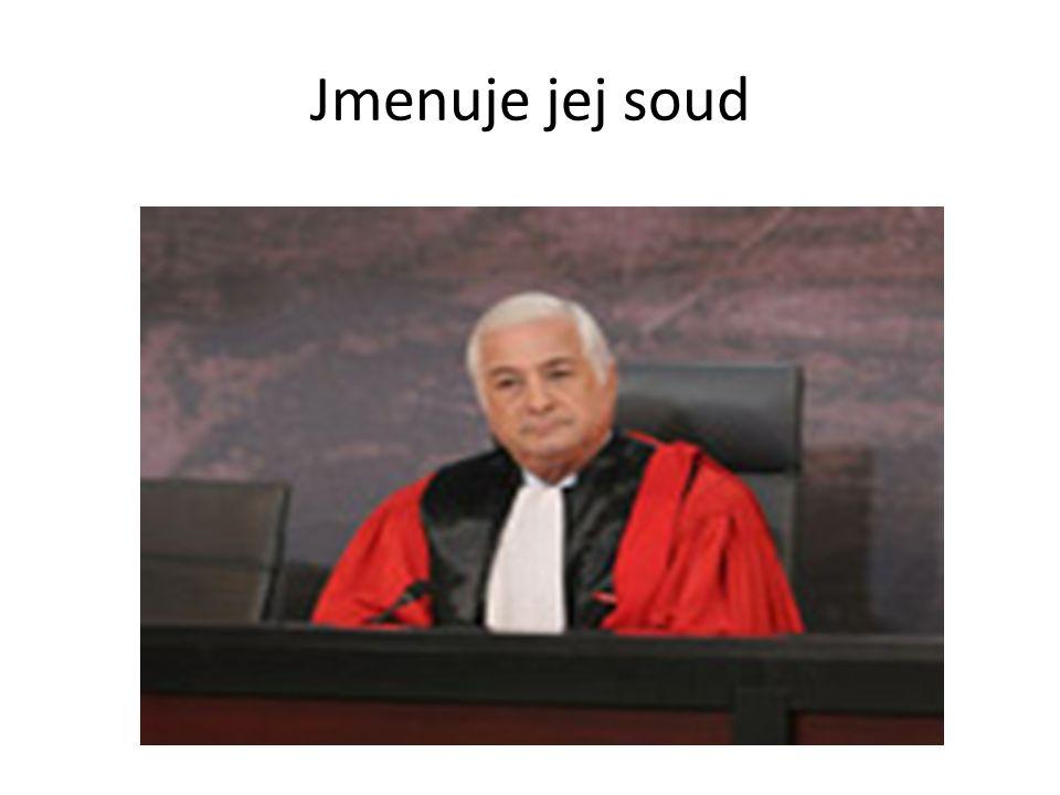 Jmenuje jej soud