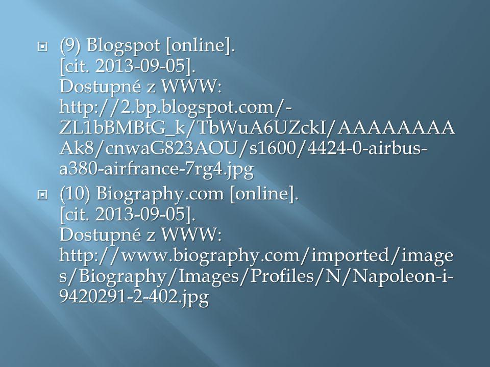  (9) Blogspot [online]. [cit. 2013-09-05].