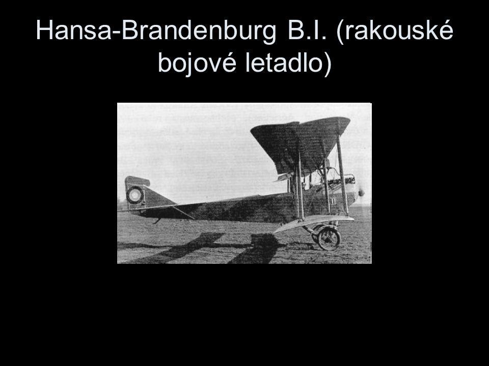 Hansa-Brandenburg B.I. (rakouské bojové letadlo)