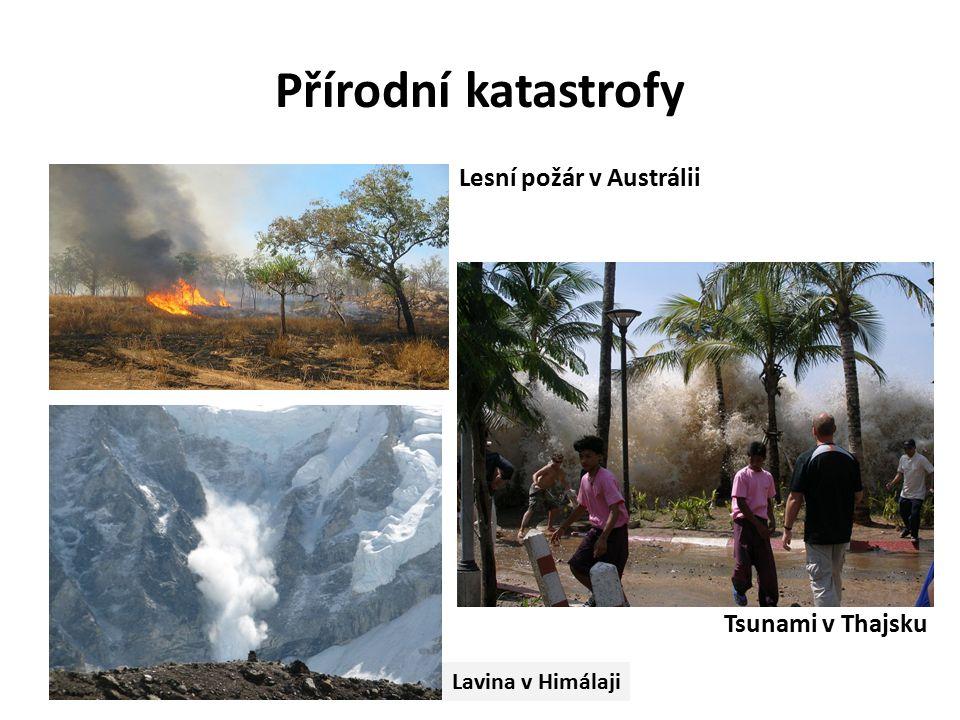 Přírodní katastrofy Lesní požár v Austrálii Lavina v Himálaji Tsunami v Thajsku