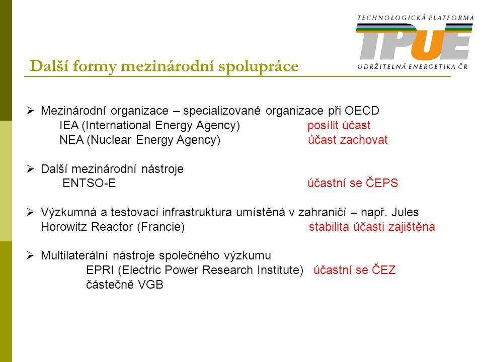Další formy mezinárodní spolupráce  Mezinárodní organizace – specializované organizace při OECD IEA (International Energy Agency) posílit účast NEA (Nuclear Energy Agency) účast zachovat  Další mezinárodní nástroje ENTSO-E účastní se ČEPS  Výzkumná a testovací infrastruktura umístěná v zahraničí – např.
