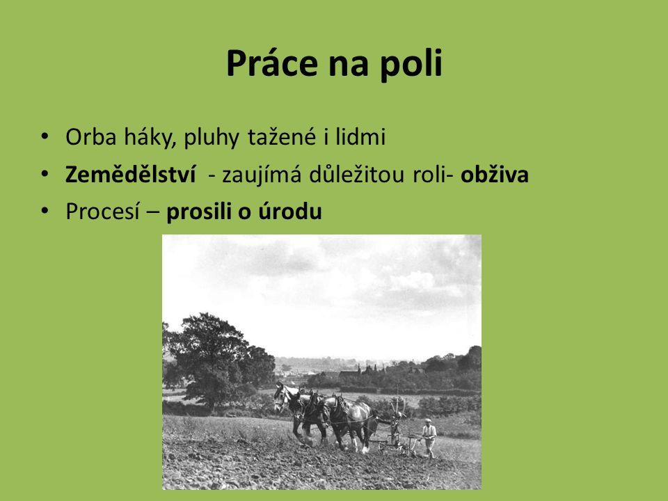 Práce na poli Orba háky, pluhy tažené i lidmi Zemědělství - zaujímá důležitou roli- obživa Procesí – prosili o úrodu
