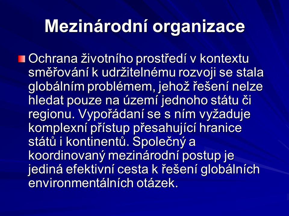 Agenda 21 – akční plán lidstva pro 21 století  Definuje problémy a hledá prostředky jak je řešit  Za realizaci odpovídají vlády zemí  V ČR je kontrola prostřednictvím zprávy o životním prostředí ČR – podává ji Min.ŽP vládě ČR  Pojem místní Agenda 21