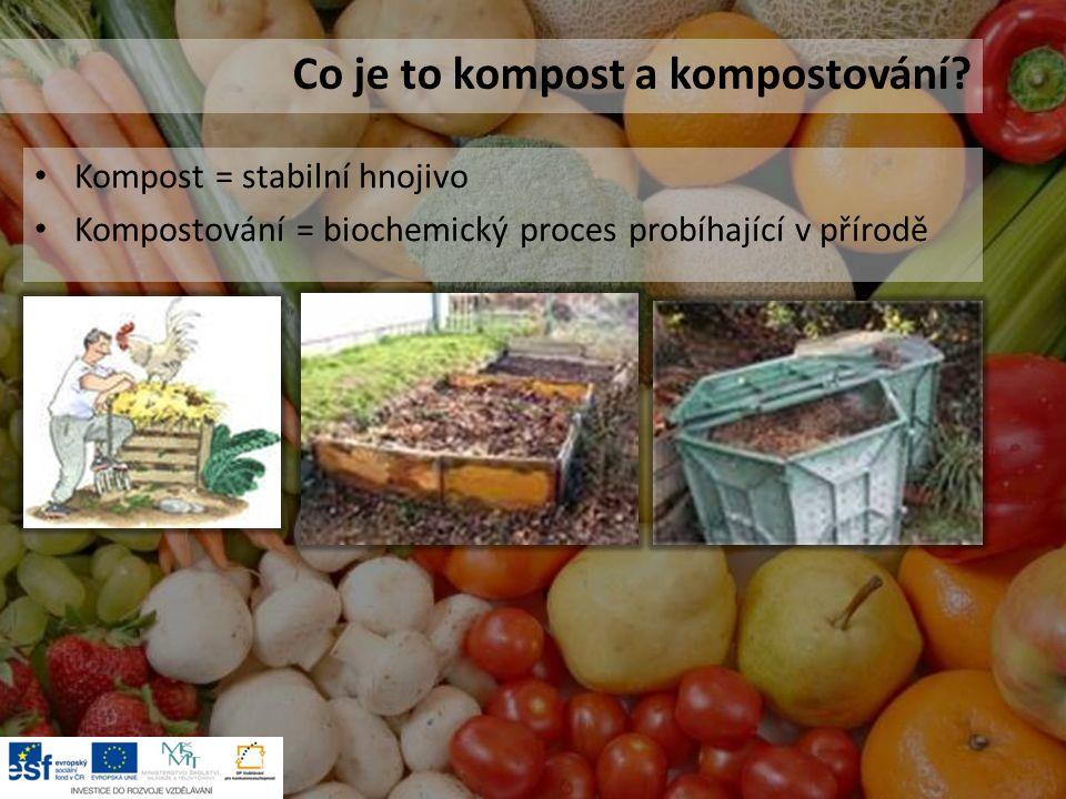Kompost = stabilní hnojivo Kompostování = biochemický proces probíhající v přírodě Co je to kompost a kompostování