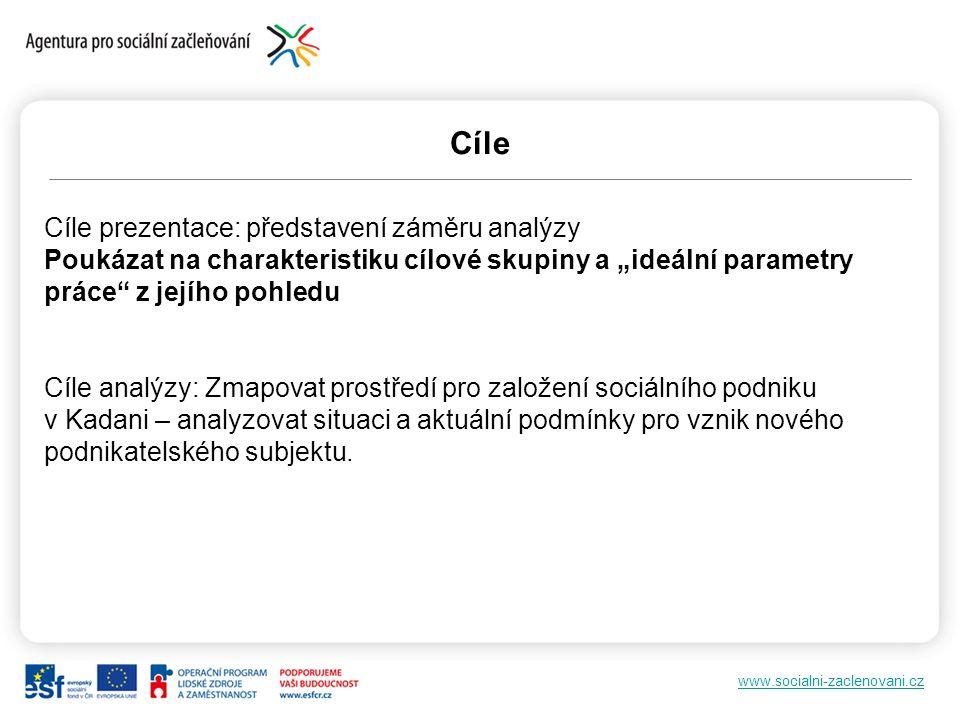 """www.socialni-zaclenovani.cz Cíle Cíle prezentace: představení záměru analýzy Poukázat na charakteristiku cílové skupiny a """"ideální parametry práce"""" z"""