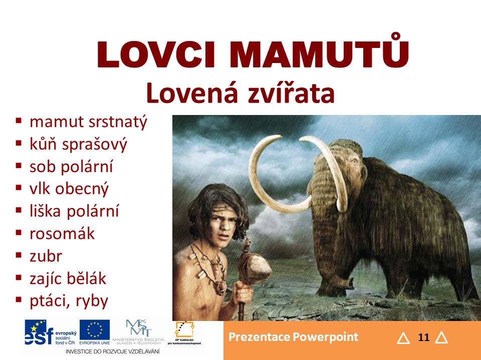 Prezentace Powerpoint 11 LOVCI MAMUTŮ Lovená zvířata LOVCI MAMUTŮ  mamut srstnatý  kůň sprašový  sob polární  vlk obecný  liška polární  rosomák  zubr  zajíc bělák  ptáci, ryby