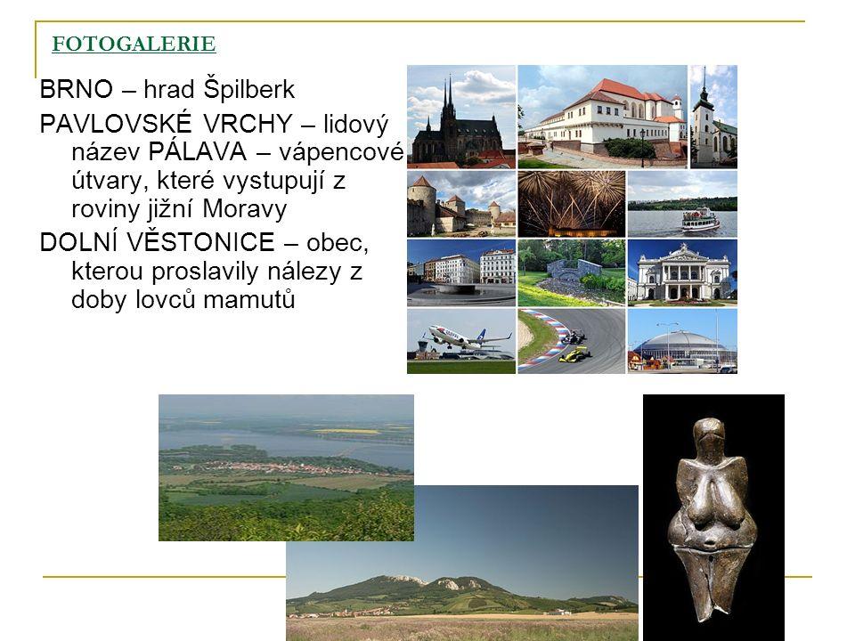 FOTOGALERIE BRNO – hrad Špilberk PAVLOVSKÉ VRCHY – lidový název PÁLAVA – vápencové útvary, které vystupují z roviny jižní Moravy DOLNÍ VĚSTONICE – obe
