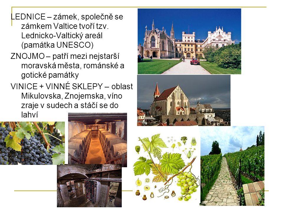 LEDNICE – zámek, společně se zámkem Valtice tvoří tzv. Lednicko-Valtický areál (památka UNESCO) ZNOJMO – patří mezi nejstarší moravská města, románské