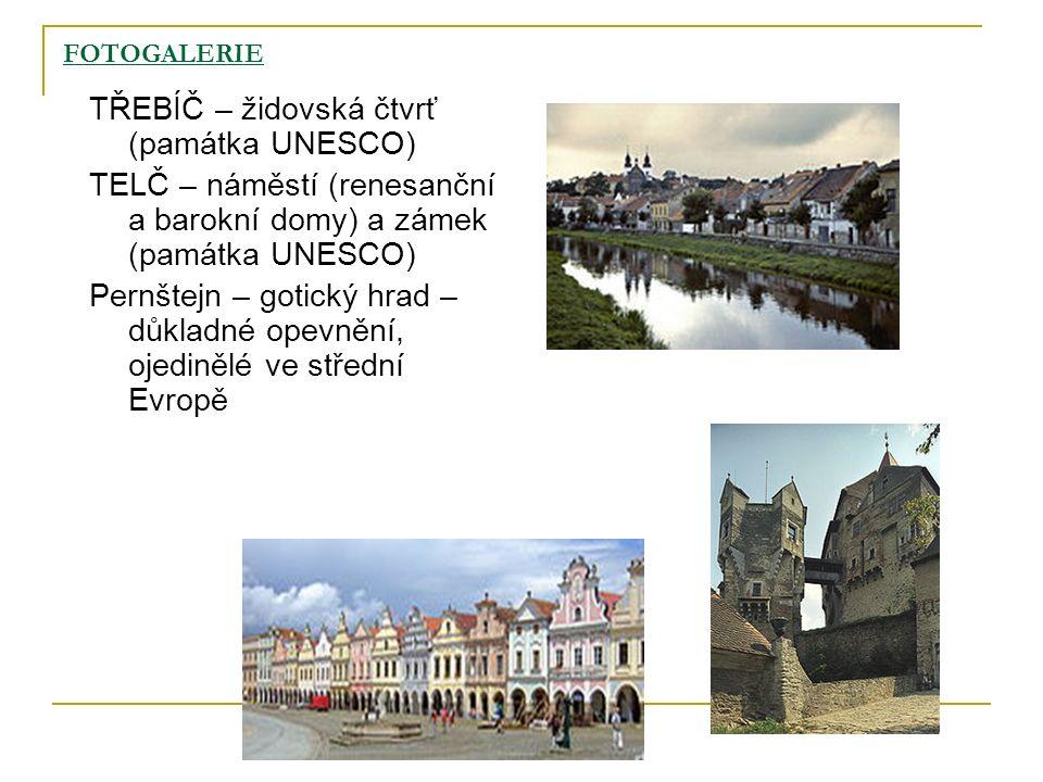 FOTOGALERIE TŘEBÍČ – židovská čtvrť (památka UNESCO) TELČ – náměstí (renesanční a barokní domy) a zámek (památka UNESCO) Pernštejn – gotický hrad – dů