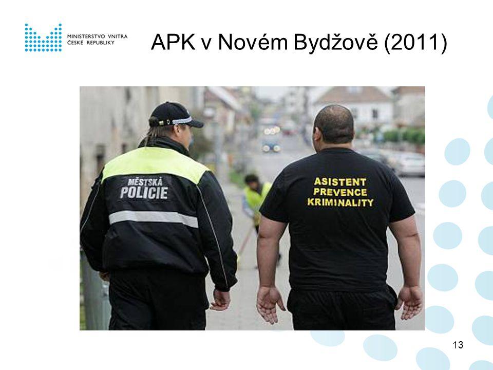 13 APK v Novém Bydžově (2011)