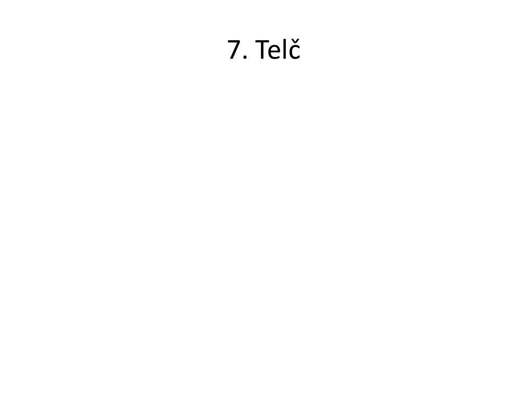 7. Telč