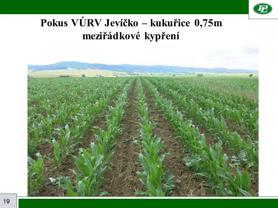 19 Pokus VÚRV Jevíčko – kukuřice 0,75m meziřádkové kypření