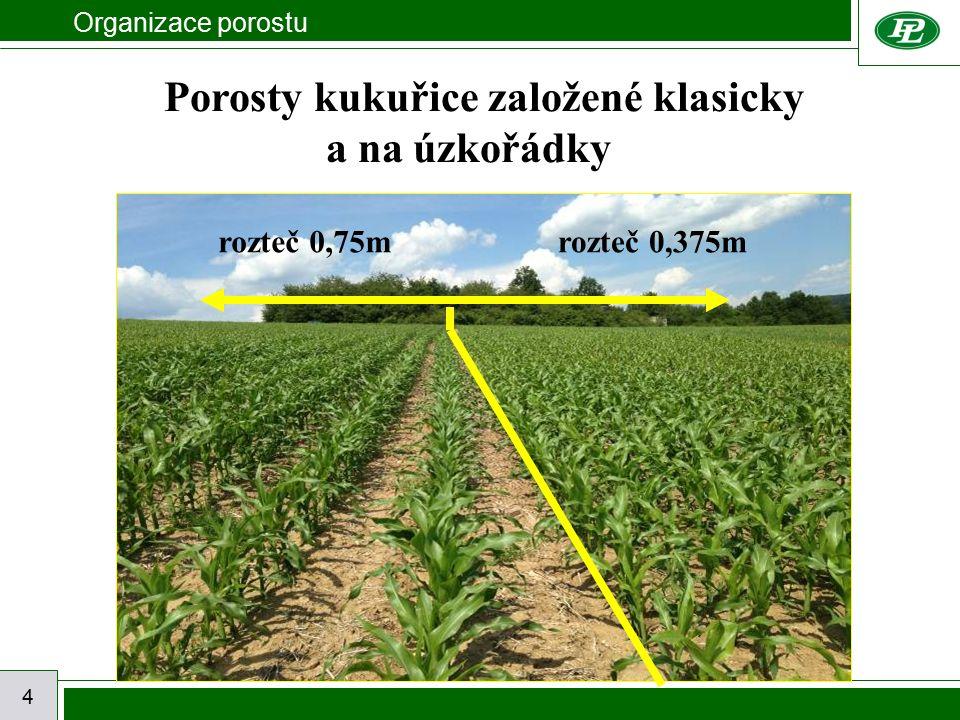 Organizace porostu 4 Porosty kukuřice založené klasicky a na úzkořádky rozteč 0,75mrozteč 0,375m