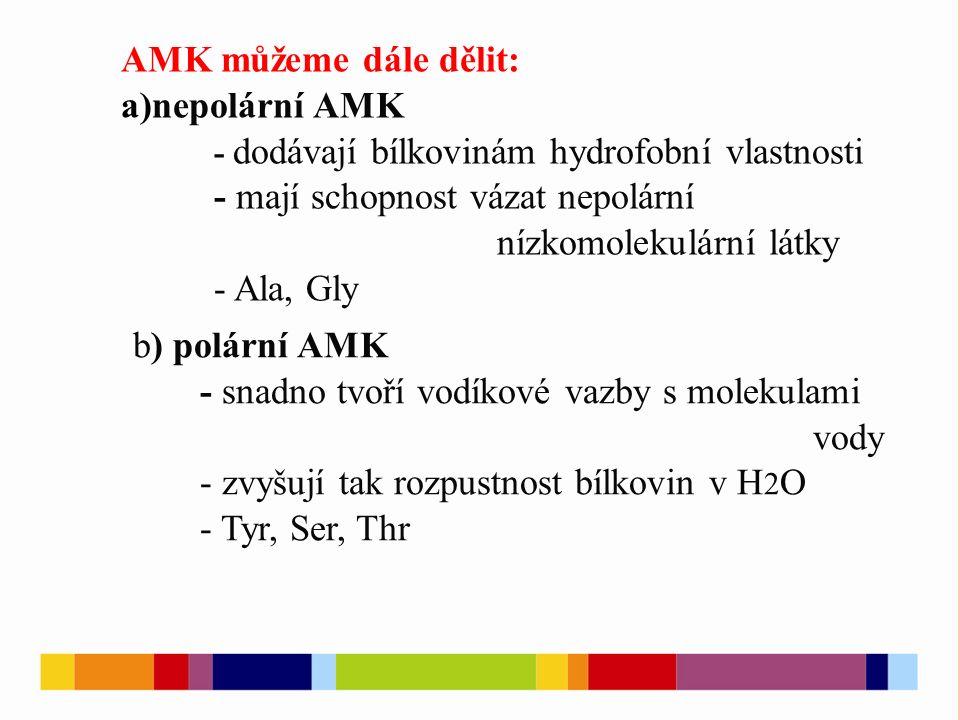 AMK můžeme dále dělit: a)nepolární AMK - dodávají bílkovinám hydrofobní vlastnosti - mají schopnost vázat nepolární nízkomolekulární látky - Ala, Gly b) polární AMK - snadno tvoří vodíkové vazby s molekulami vody - zvyšují tak rozpustnost bílkovin v H 2 O - Tyr, Ser, Thr