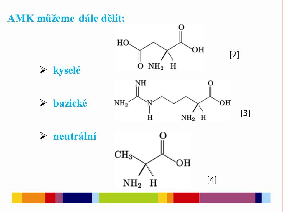  kyselé  bazické  neutrální AMK můžeme dále dělit: [2] [3] [4]
