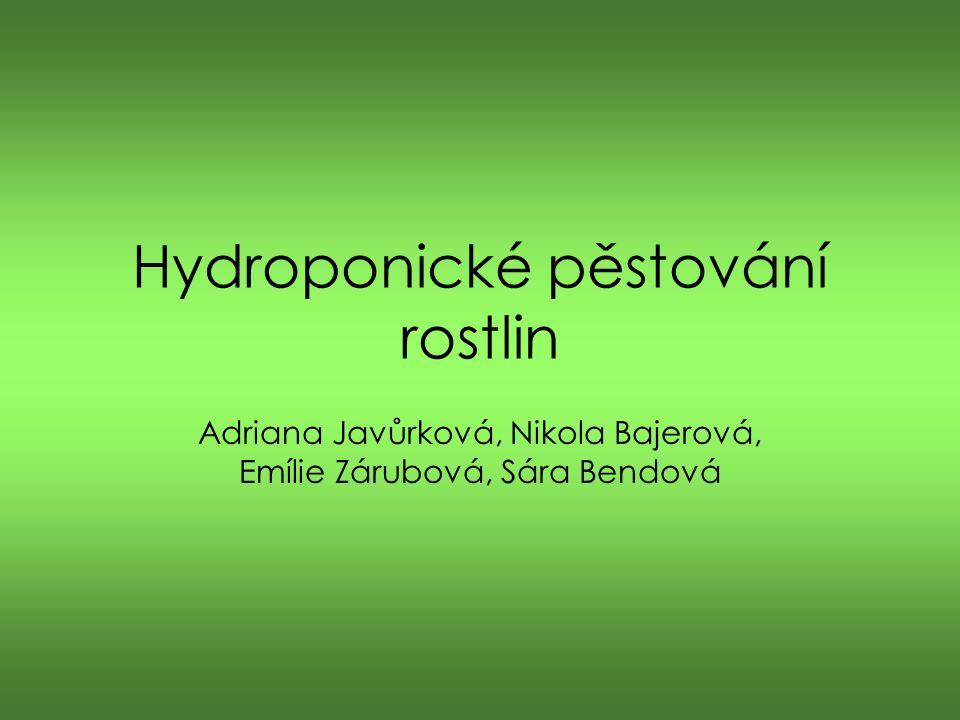 Hydroponické pěstování rostlin Adriana Javůrková, Nikola Bajerová, Emílie Zárubová, Sára Bendová
