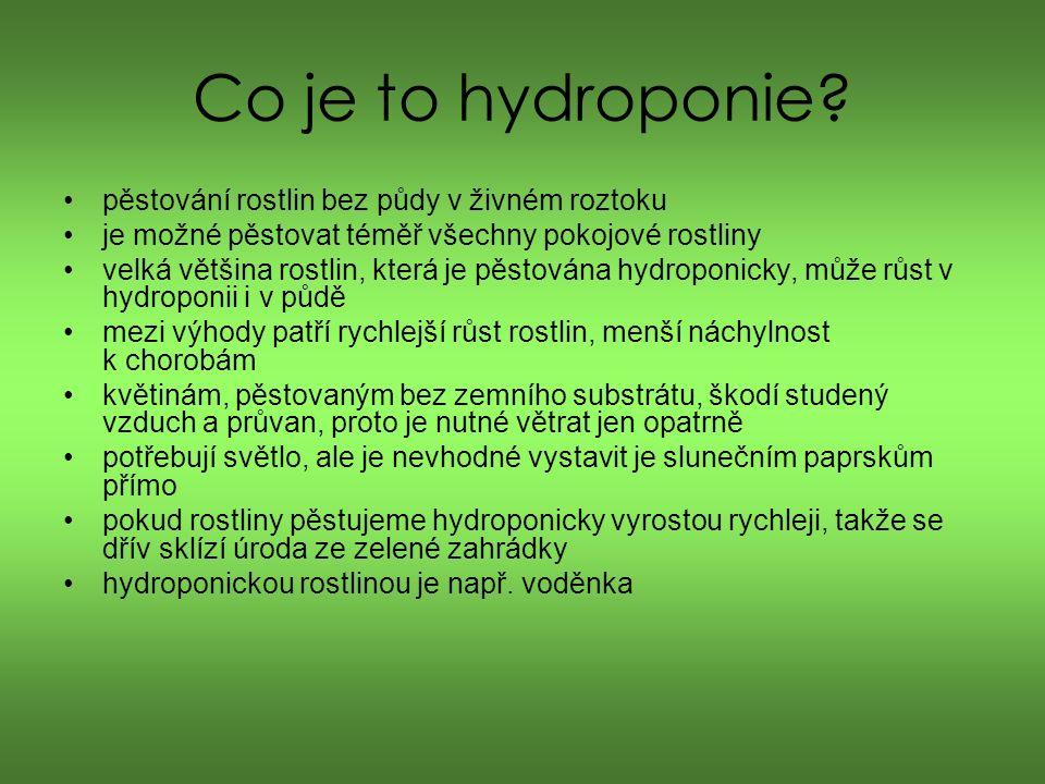 Co je to hydroponie.
