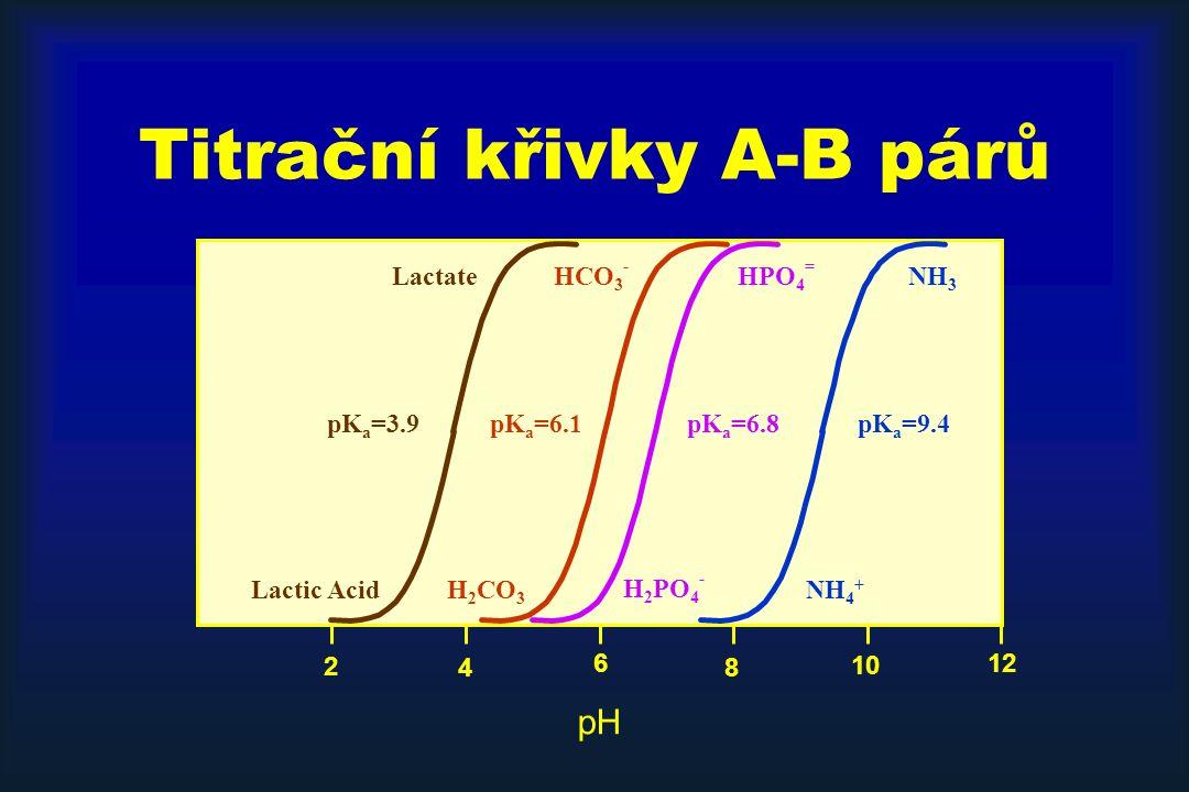 Titrační křivky A-B párů 12 8 6 4 2 10 pH NH 4 + pK a =9.4 H 2 PO 4 - pK a =6.8 NH 3 HPO 4 = HCO 3 - H 2 CO 3 pK a =6.1 Lactic Acid Lactate pK a =3.9