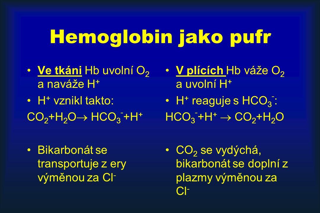 Hemoglobin jako pufr Ve tkáni Hb uvolní O 2 a naváže H + H + vznikl takto: CO 2 +H 2 O  HCO 3 - +H + Bikarbonát se transportuje z ery výměnou za Cl - V plících Hb váže O 2 a uvolní H + H + reaguje s HCO 3 - : HCO 3 - +H +  CO 2 +H 2 O CO 2 se vydýchá, bikarbonát se doplní z plazmy výměnou za Cl -